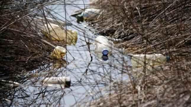 تراكم النفايات ببحيرة مارتشيكا يثير استنكارا بالناظور